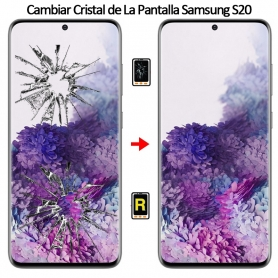 Cambiar Cristal De Pantalla Samsung S20