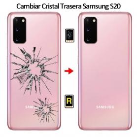 Cambiar Tapa Trasera Samsung S20 SM-G980F