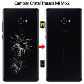 Cambiar Tapa Trasera Xiaomi Mi Mix 2