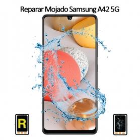 Reparar Mojado Samsung Galaxy A42 5G