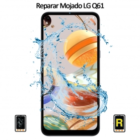 Reparar Mojado LG Q61