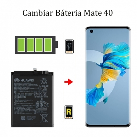 Cambiar Batería Huawei Mate 40