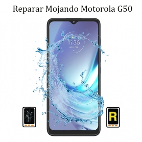Reparar Mojado Motorola...
