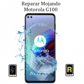 Reparar Mojado Motorola G100