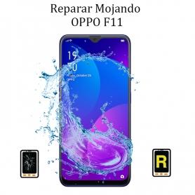 Reparar Mojado OPPO F11