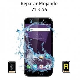 Reparar Mojado ZTE A6