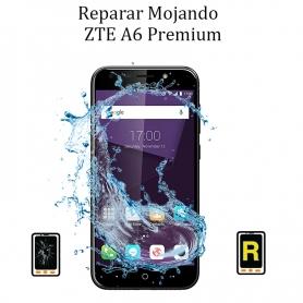Reparar Mojado ZTE A6 Premium