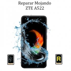 Reparar Mojado ZTE A522