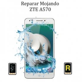 Reparar Mojado ZTE A570
