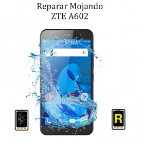 Reparar Mojado ZTE A602