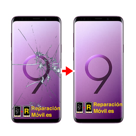 Cambiar Cristal chassis Samsung S9 Plus