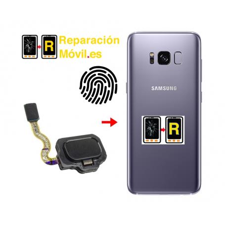 Cambiar Flex De Huella Samsung S8 Plus
