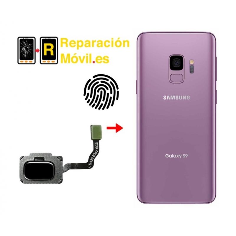 Cambiar Flex De Huella Samsung S9