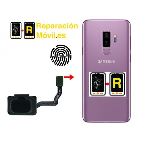 Cambiar Flex De Huella Samsung S9 Plus