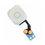 Cambiar Botón Home iPhone 5