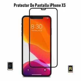 Protector De Pantalla iPhone Xs