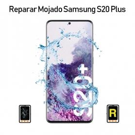 Reparar Mojado Samsung galaxy S20 Plus