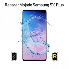 Reparar Mojado Samsung galaxy S10 Plus