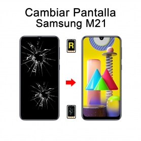Cambiar Pantalla Samsung Galaxy M21