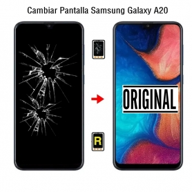 Cambiar Pantalla Samsung Galaxy A20 SM-A205F