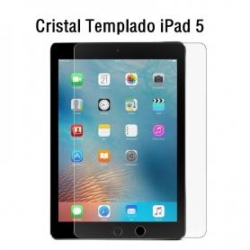 Cristal Templado iPad 5