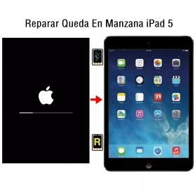 Reparar Queda En Manzana iPad 5