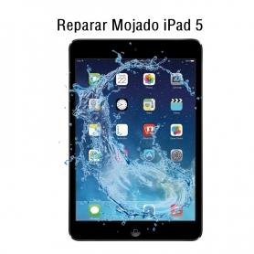 Reparar Mojado iPad 5