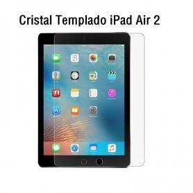 Cristal Templado iPad Air 2