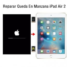 Reparar Queda En Manzana iPad Air 2