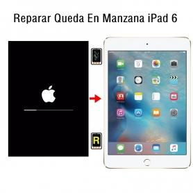 Reparar Queda En Manzana iPad 6