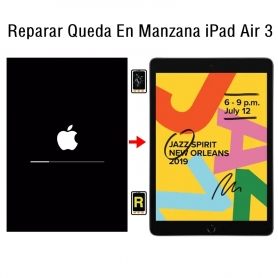 Reparar Queda En Manzana iPad Air 3