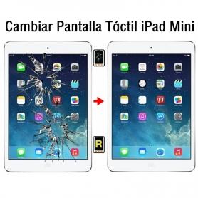 Cambiar Pantalla Táctil iPad Mini