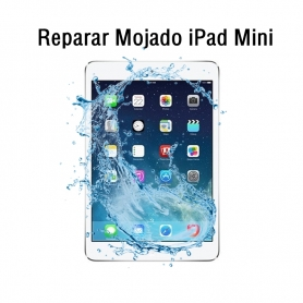 Reparar Mojado iPad Mini