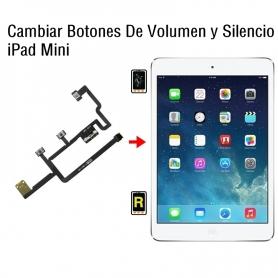 Cambiar Botones De Volumen y Silencio iPad Mini