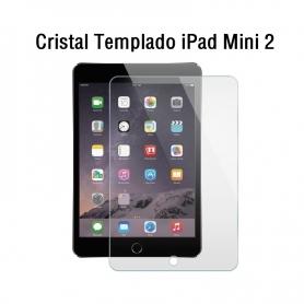 Cristal Templado iPad Mini 2