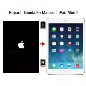 Reparar Queda En Manzana iPad Mini 2