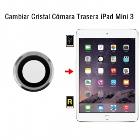 Cambiar Cristal Cámara Trasera iPad Mini 3