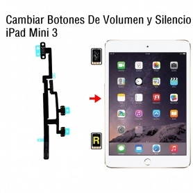 Cambiar Botones De Volumen y Silencio iPad Mini 3