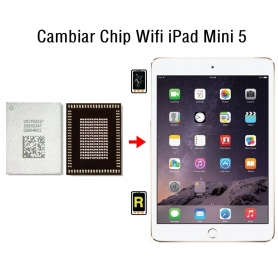 Cambiar Chip Wifi iPad Mini 5