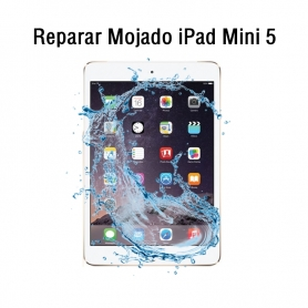 Reparar Mojado iPad Mini 5