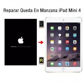 Reparar Queda En Manzana iPad Mini 4