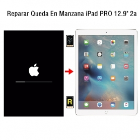 Reparar Queda En Manzana iPad Pro 12.9 2nd Gen