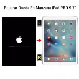 Reparar Queda En Manzana iPad Pro 9.7