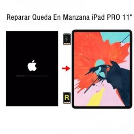 Reparar Queda En Manzana iPad Pro 11