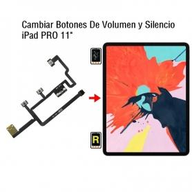 Cambiar Botones De Volumen y Silencio iPad Pro 11