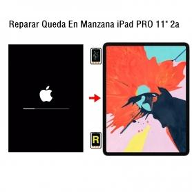 Reparar Queda En Manzana iPad Pro 11 2nd Gen