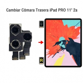 Cambiar Cámara Trasera iPad Pro 11 2nd Gen