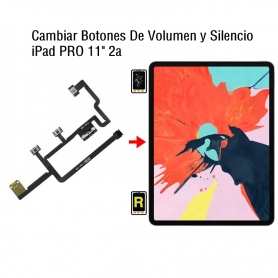 Cambiar Botones De Volumen y Silencio iPad Pro 11 2nd Gen