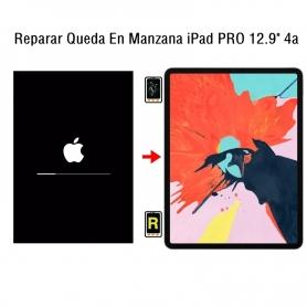 Reparar Queda En Manzana iPad Pro 12.9 4nd Gen