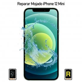 Reparar iPhone 12 Mini Mojado